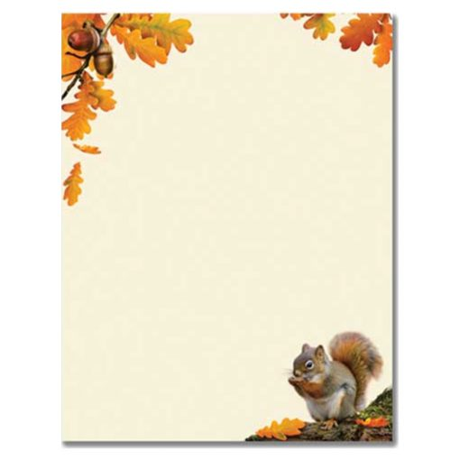 Squirrel Holding Acorn Printer Paper